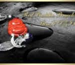 Red Buddha Bracelet in Precious Gems and DZI Clear Crystals- Charms and Crystals by Joy Lim